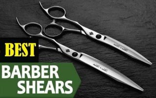 Best Professional Hair Cutting Shears