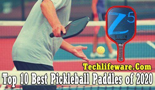 best pickleball paddles 2020